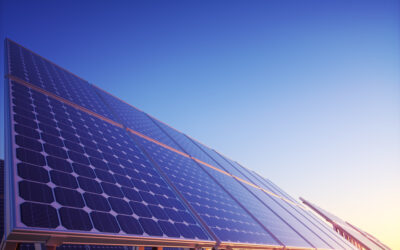 What I Wish Everyone Knew About Switching to Solar